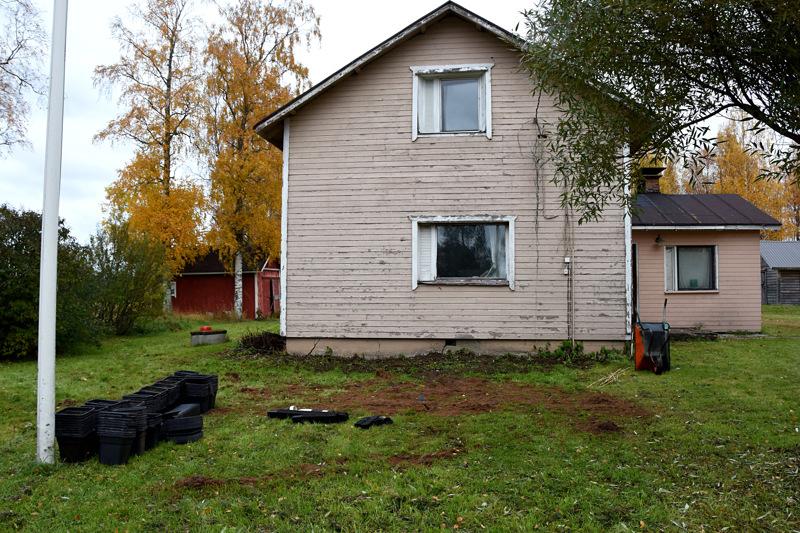 Rikolliset viljelivät kannabista rintamamiestalossa Haapaveden ja Kärsämäen rajan tuntumassa Kuulusteluissa he ovat väittäneet, että talo vuokrattiin vapaa-ajan käyttöön. Hovioikeus piti väitettä mahdollisena mutta ei kovin uskottavana.