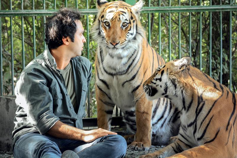 Brittiohjaaja Anson Hartfordin ja iranilaisen pitkän linjan elokuvantekijän Jamshid Mojaddadin dokumenttielokuva pohtii ihmisen suhdetta luontoon ja eläimiin sekä raottaa eläintarhojen valonarkaa puolta.