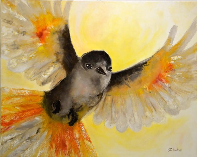 Terveisten tuoja. Voimakas ja kohti tuleva lintumaalaus on hyvä esimerkki Mervi Puolivälin tyylistä, taidosta  ja värinkäytöstä.