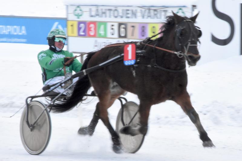 Niko Jokelan ja Juha-Matti Paavolan yhteistyö toi kaksi voittoa. Jokelan ohjastama Siron Peli oli kylmäveristen pitkän matkan ykkönen.