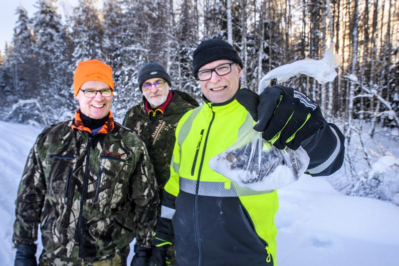 Lauri Linna, Markku Mäki-Petäjä ja Juha Landin keräsivät Kannuksen Jylhästä suden ulostetta tutkittavaksi. Landinin mukaan neljä sutta oli asustanut pari yötä noin 70 hehtaarin metsäalueella taajaman ja Jylhän välisellä alueella.