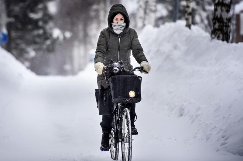 Lumipyry ei estänyt pyöräilijöitä Kokkolassa. Hanna Nauha ja Pimu ajelivat Hakalahdessa.