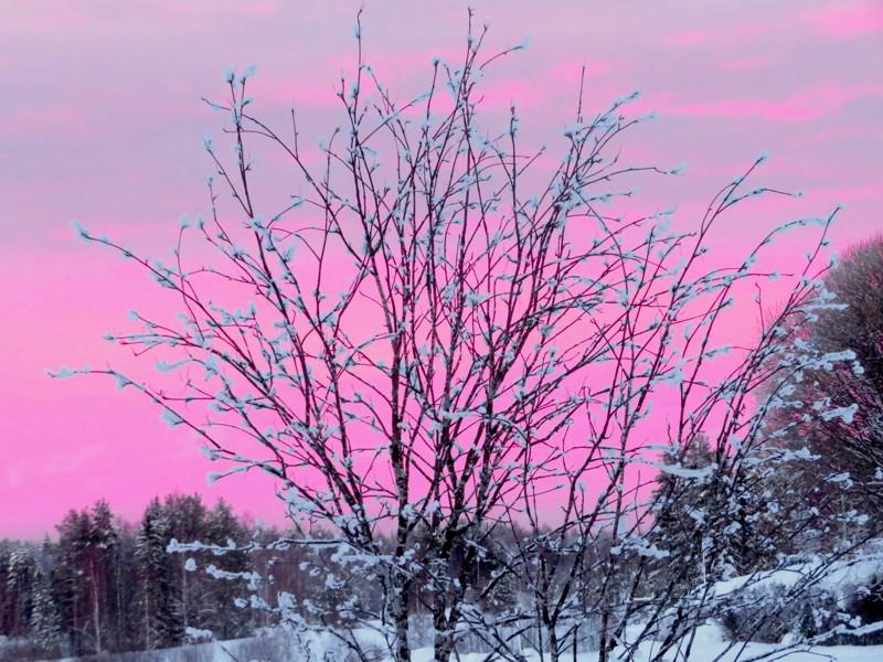 Helmikuun heijastusta taivaalla.