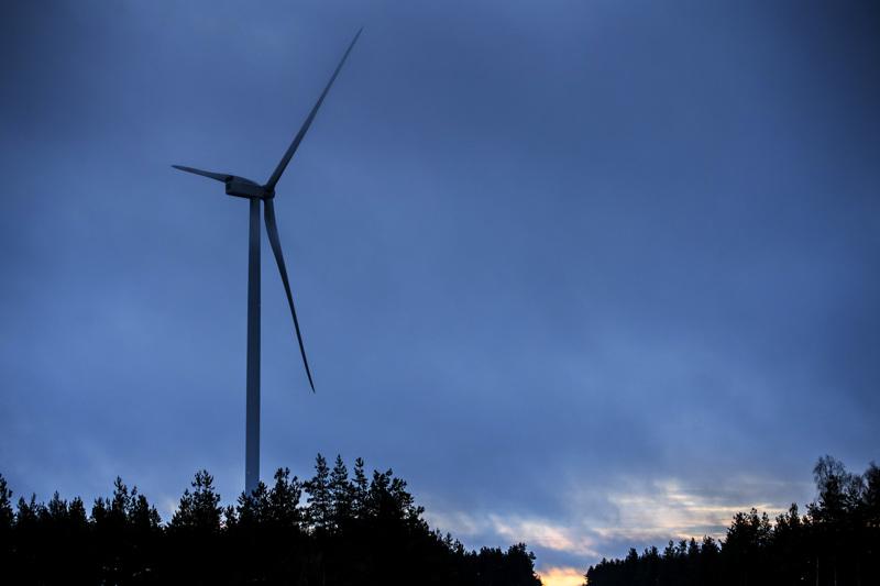 Tuulivoiman taival Keski-Pohjanmaalla on vasta aluillaan. Kuvassa Ykspihlajan tuulivoimapuisto. Tukea Ykspihlaja Wind Oy on saanut yli viisi miljoonaa euroa, selviää Energiaviraston hallinnoimasta syöttötariffijärjestelmästä.