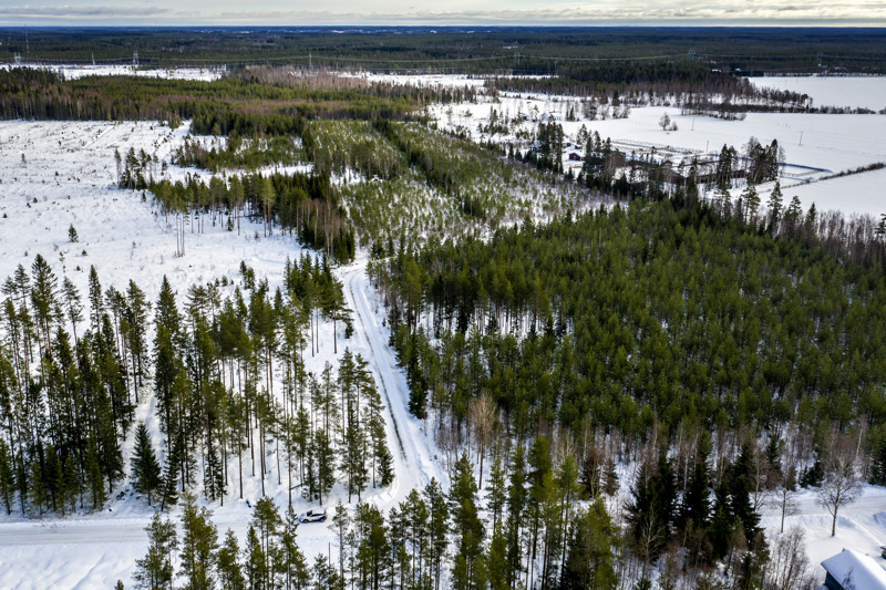 Kasitien ja Rantatien yhdistävä tie kulkisi ratsutilan vierestä Seksmannintien yli ja edelleen Laajalahden ja Kvikantin väliin jääviin metsiin.