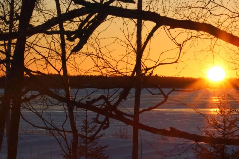 Auringonnousu Öjassa 2.3.2021.