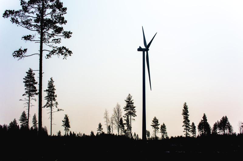 Kaikkiaan Halsuan Riutanmaan ja Ullavan Tuohimaan hankealueelle kaavaillaan 68 tuulivoimalaa.