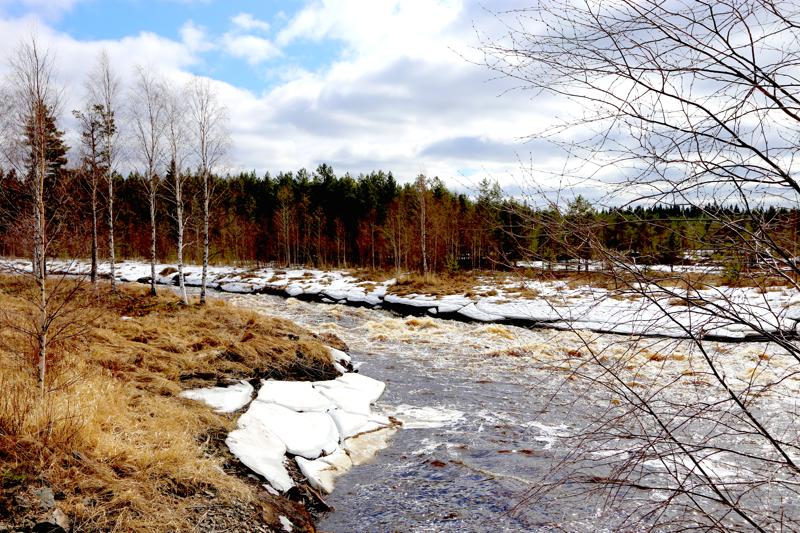 Patanan tekojärveen ohjataan vesimassoja Perhonjoesta täyttökanavaa pitkin. Arkistokuva keväältä 2018.