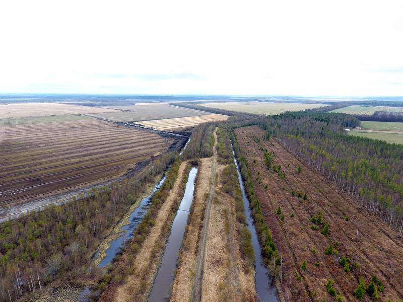 Piipsannevaa keväällä 2019. Piipsannevalla turvetuotanto on loppunut ja alueita on viljelyskäytössä, metsitettynä ja kosteikkoina. Alueelle suunnitellaan tuulivoimapuistoa. Haapaveden-Siikalatvan seutukunnassa tuotannossa olevien ja potentiaalisten turvetuotantoalueitten määrästä ei ole kokonaistietoa.