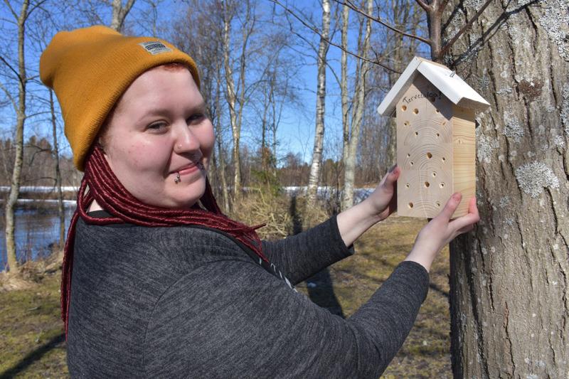 Voisihan tämän puuhunkin ripustaa, esittelee Ellika Hautala. Hänen hyönteishotellinsa päätyy kuitenkin parvekkeelle.