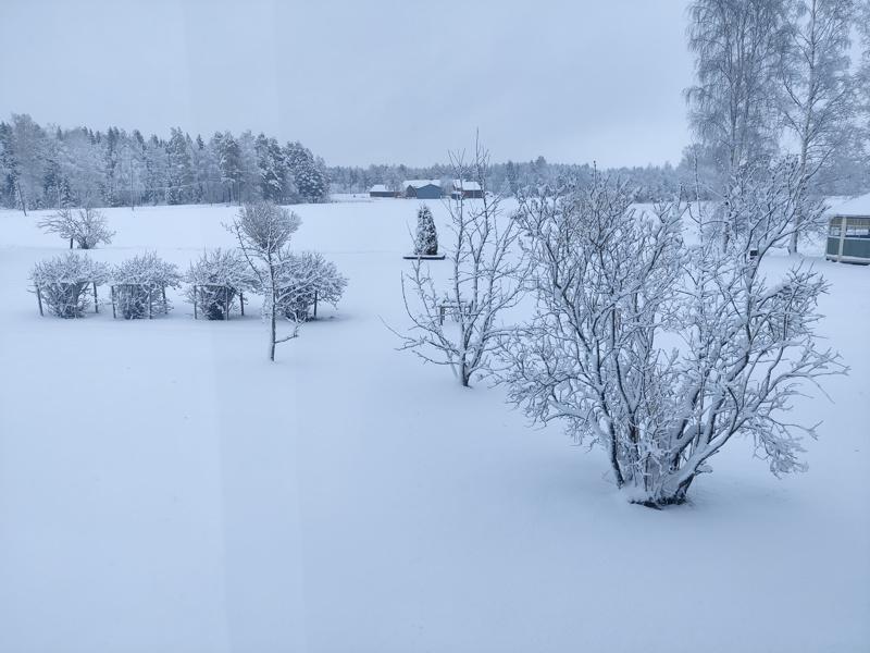 Lumisade kävi yöllä.