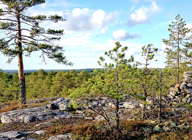Vetelin kunta käytti etuosto-oikeutta maakaupassa, joka koski metsäpalstaa Puusaarenkallioiden takana. Kaupasta on valitettu hallinto-oikeuteen.