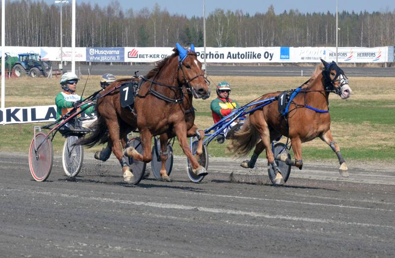 Lystilän Lento (vas.) ohjaksissaan Ville Pohjola dominoi Nordic cupia.
