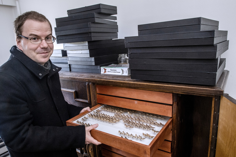 Tuomo A. Komulainen on innokas perhosharrastaja, jonka kokoelmasta löytyy yli 700 eri perhoslajia.