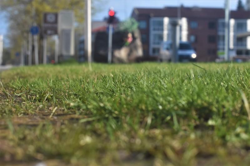 Maasto on paikoin kuivaa, joten ruohikkopalon riski on olemassa. Kuva Kokkolan keskustasta.