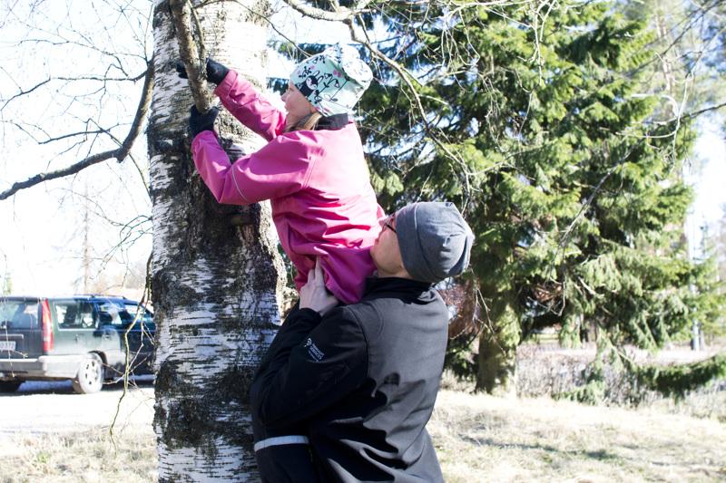 Geokätköt voivat olla lähes missä tahansa. Irina Maijala kiipeilee mielellään puissa hakemassa geokätköjä. Jaakko-isä auttaa tytärtään puuhun.