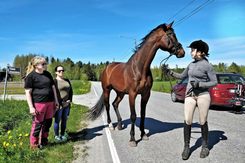 """Hevosyrittäjä Patricia Haglund, Fäbodantien aktiivi Teija Löfholm yhdessä Alexandra Haglundin ja Sakun, säkäkorkeutta 186 cm, kanssa Fäbodantien """"kiihdytysosuudella"""".  - Ehkä nopeusrajoituksen lasku hillitsee kaasujalkaa vähän, on toiveena."""