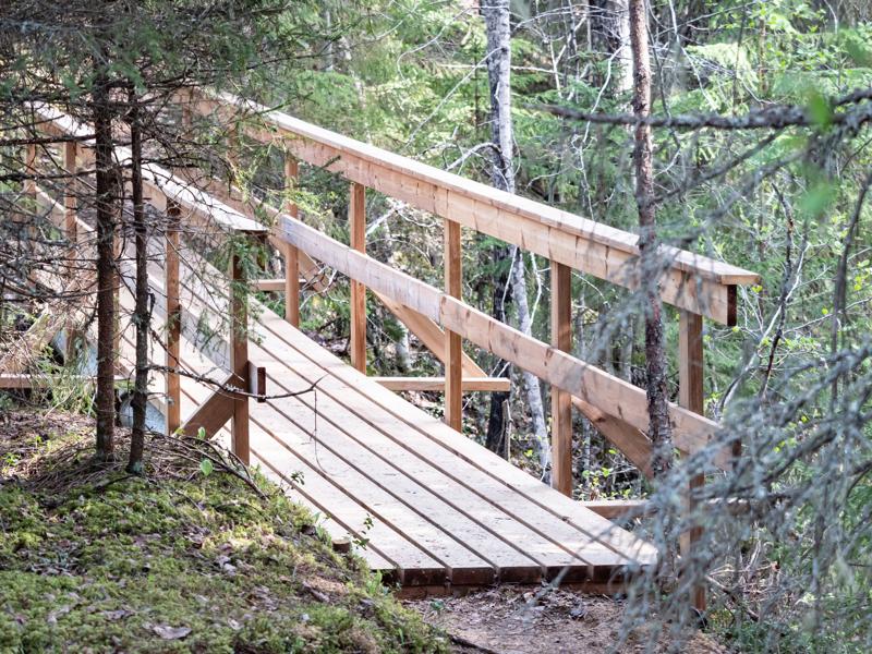 Kumisevan kyläyhdistys on tehnyt hienoa työtä Kalajoen yläjuoksulla sijaitsevan Lohijoen alueen retkeilyreittien kunnostuksessa.