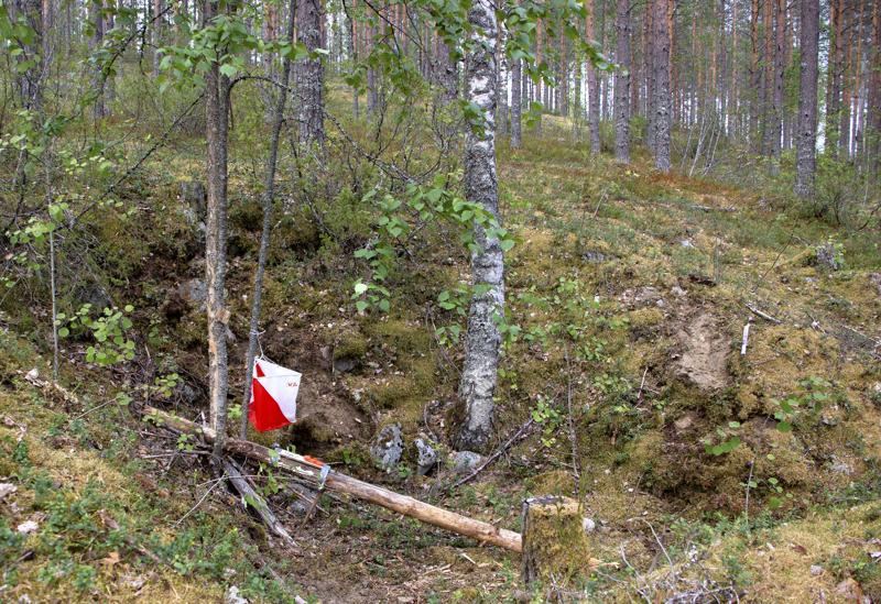 Kalajokilaakson Iltarastit jatkuvat omatoimirasteina.Rastit ovat metsässä aina viikon kerrallaan.