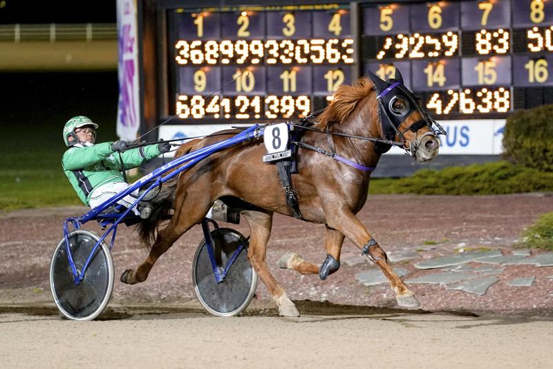Saara Tirkkosen Primakka oli kolmas Kajaanissa ja jatkaa urakkaansa jo torstaina Kaustisella. Silloin kyydissä on kuvassa hevosta Seinäjoella viime syksynä voittoisasti ohjastanut Niko Jokela.