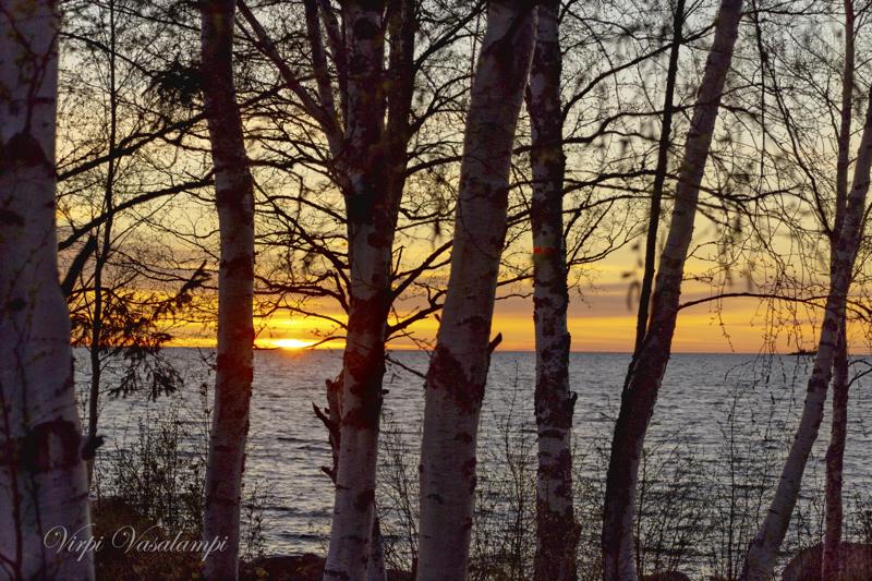 Auringonlasku Pikkumansikassa 20.5.2021.