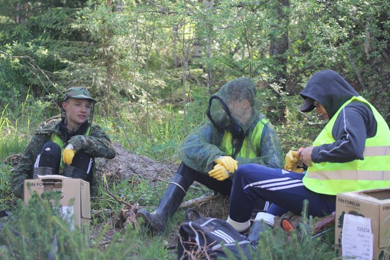 Onni, Rasmus ja Oskari ovat selkeästi ennenkin metsässä kuljailleet rennosta tunnelmasta päätellen.