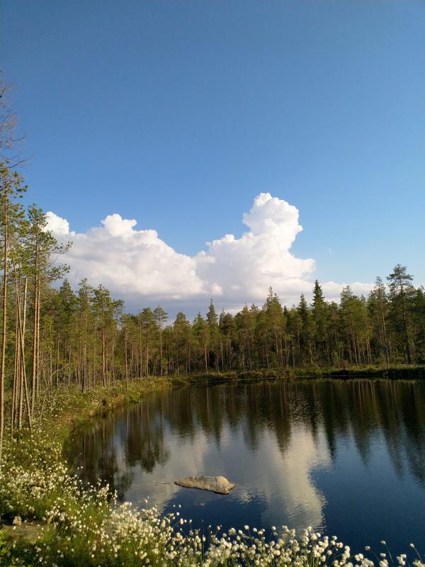 Kesäistä pilvitaidetta.