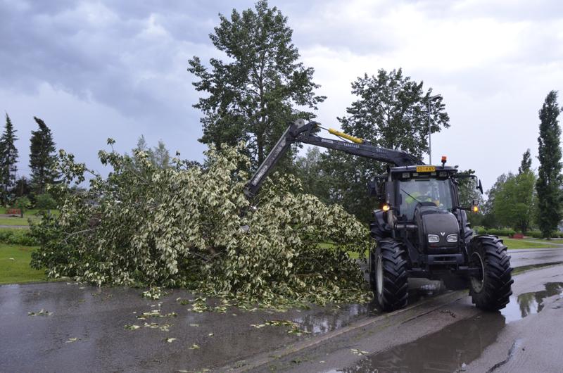 Yksi puista kaatui Torikadulle, mutta siirrettiin pian pois.
