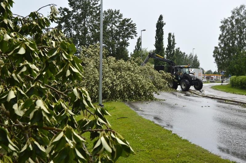 Ylivieskan Liikennepuistossa tuli tiistaina myrskyn vuoksi laajasti raivaustöitä.