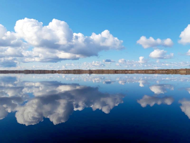 Halsuanjärvi on ollut pitkään sinilevävapaata aluetta.
