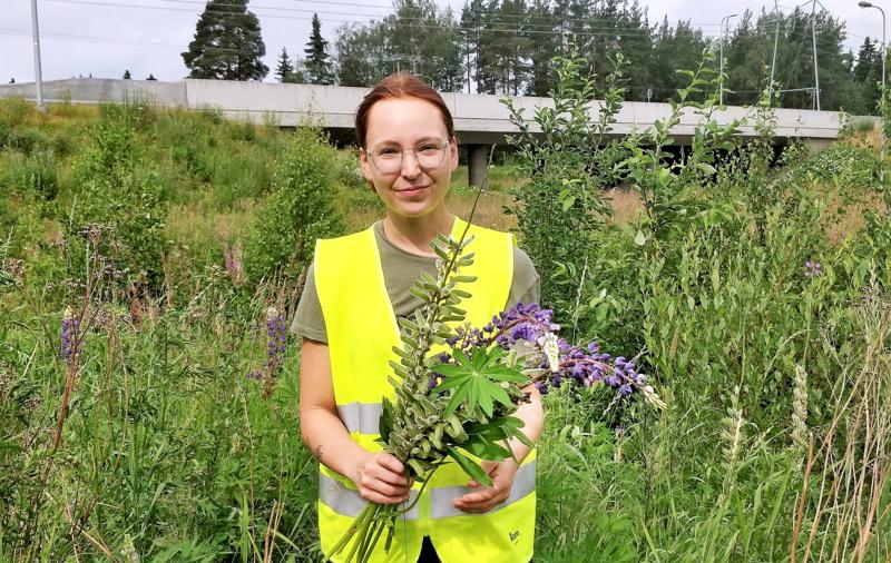 Meri- ja ympäristöbiologiaa opiskeleva Jessica  Sjöblom  teki vieraslajien esiintymistä alustavan kartoituksen Pietarsaaressa ja Luodossa jo viime kesänä.