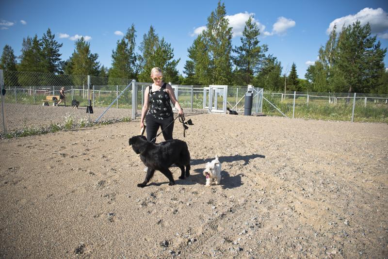 Maiju Rautio viihtyy uudessa koirapuistossa sekarotuisen sorsastuskoira Hiltan sekä itse kasvattamansa kääpiösnautseri Erkin kanssa.
