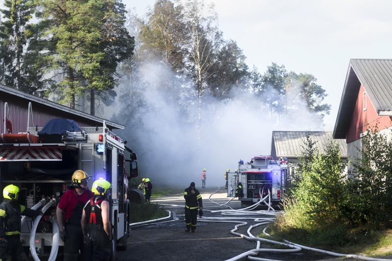 Navetan palosta aiheutui runsaasti savua, jolle myös navetassa majailleet naudat altistuivat.