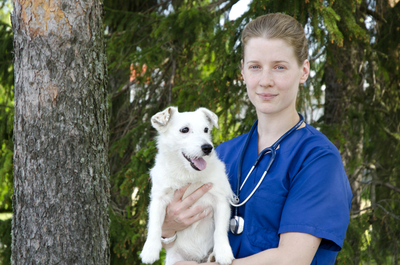 Petra Aitto-oja muistuttaa, että helteellä juomaveden saatavuus on tärkeää kaikille eläimille.
