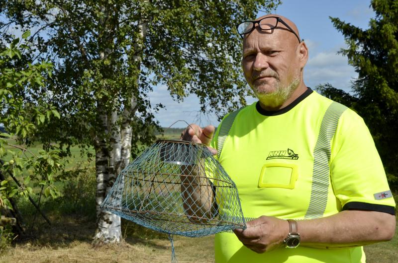 Veli-Pekka Naukkarisella riittää monenlaisia rapupyydyksiä. Kuvan pyydys on vuosikymmeniä vanha ja toimii edelleen hyvin.