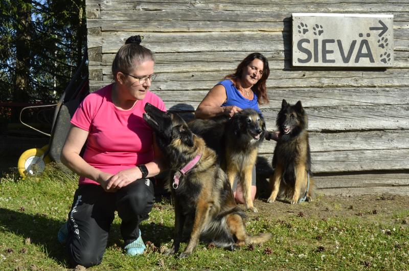 Nina Saajossalo (vas.) ja Pinkku-koira sekä Susanna Kariniemi ja Remu ja Rasta harjoittelevat useita lajeja Sievän kentällä.