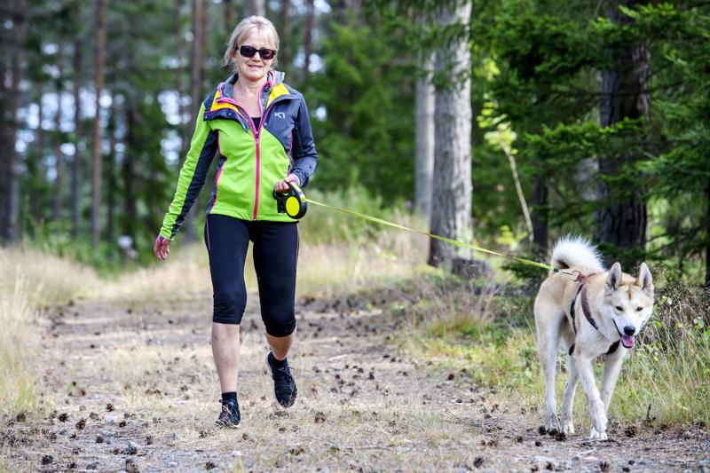 Tytti Ronkainen lenkkeilemässä Nero-koiran kanssa Trullevissa. Nerolle on annettu paikallisliuos suojaamaan punkkeja vastaan. Nuuskiminen heinikossa on näin turvallisempaa.