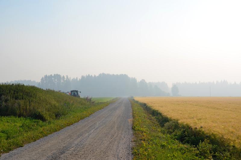 Metsäpalon usvanharmaa savu sumensi maisemaa Mutkalammilla Kannuksessa.