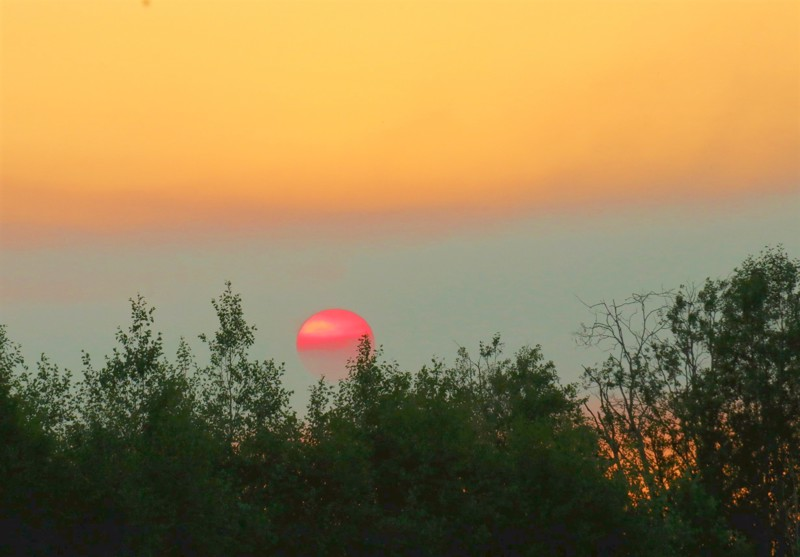 Maastopalon savut värjäsivät auringon.