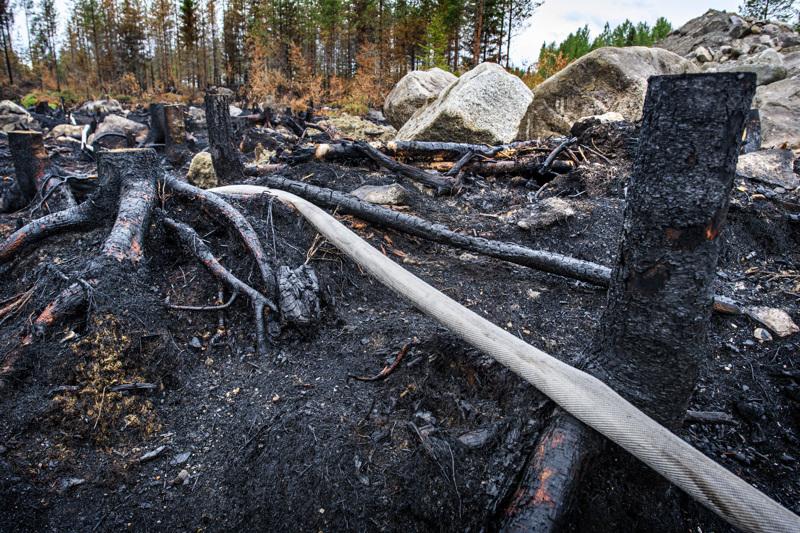 Lähes kaksi viikkoa kestänyt tulipalo on ollut armoton paloalueen maastolle.