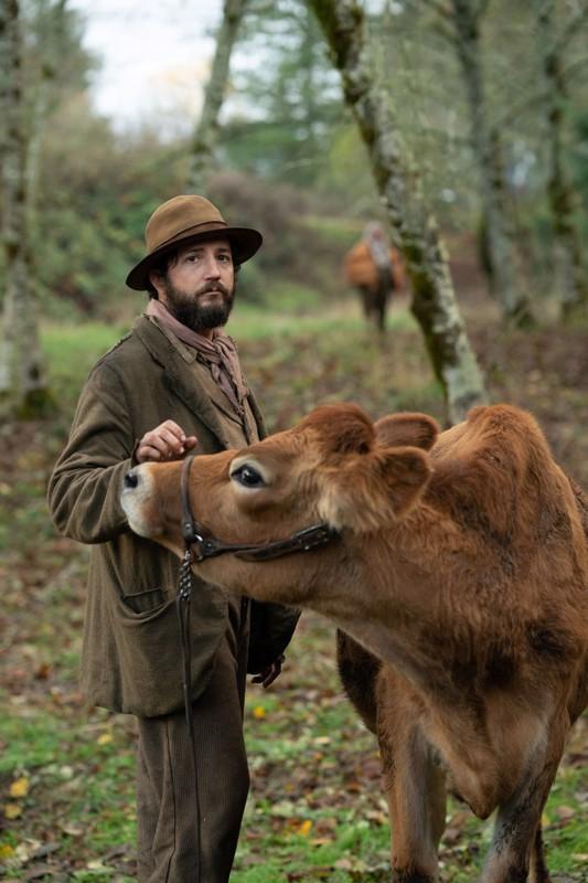 Sekaisin lehmästä.