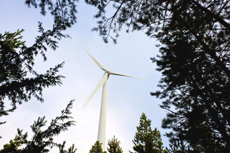 Tuohimaa-Riutanmaan tuulivoimapuistoon tulisi 65–73 voimalaa.