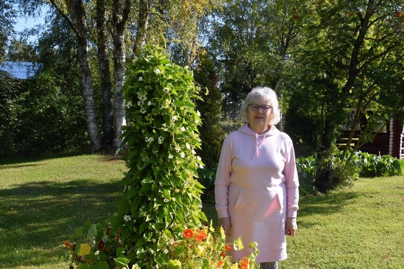 Onnea! Sinikka Pernun kylvämät kukat ovat kestäneet hyvin hellekesää ja ilahduttavat vielä nimipäivänä syyskuussa.