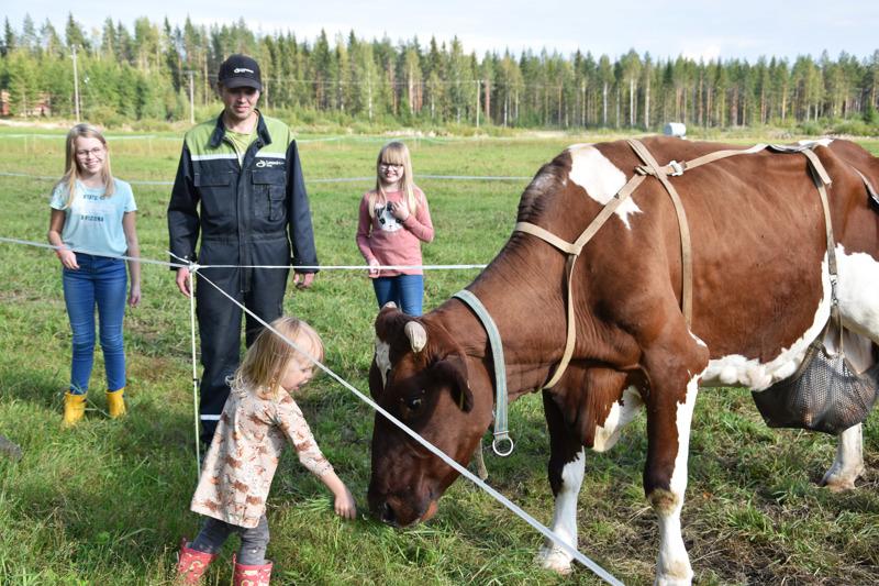 Vieno-tyttö ojentaa Tappisarvelle ruohotuppoa. Sanni, Arto ja Reeta seuraavat vanhan lemmikin rouskutusta.