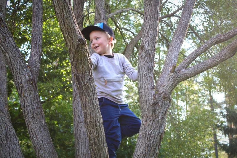 Justus Kero kotipihan puussa.