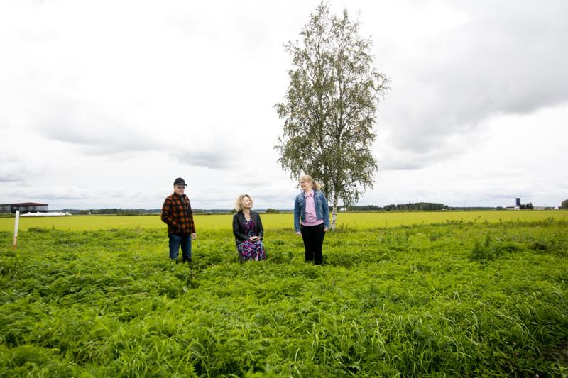 Nivalan maaseutunäyttelyn alue levittäytyy laajalle alueelle - näyttelytilaa on noin 30 hehtaaria. Näyttelyaluetta katsastavat Pekka Ruostetsaari, Päivi Karikumpu ja Mervi Vähäsöyrinki.