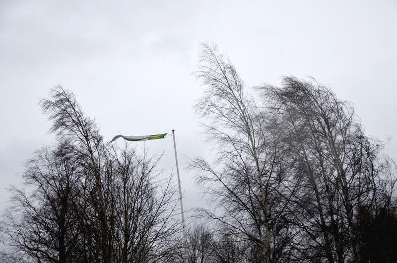 Tuuli yltyy vaarallisen voimakkaaksi. Seurauksia on syytä varoa, kun liikkuu ulkona.