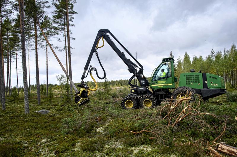 Lauri-Kalle Kettunen tekee käytännön harjoittelua metsätalouskoulutuksessa Kannuksessa.