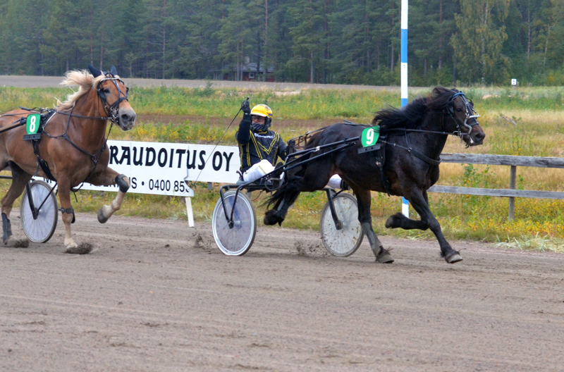 –Odotin menestystä, sillä ori oli jo kahdessa edellisessä startissaan hyvä, Ville Koivisto totesi Björkevikingin voitosta.