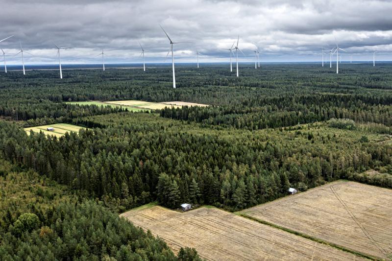 Halsuan Honkakankaan ja Kanniston tuulivoimaloiden osayleiskaavasta päätetään syyskuussa. Arkistokuvassa Kalajoen Mustilankankaan tuulipuisto.
